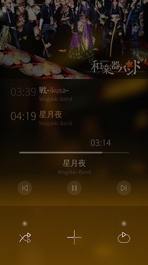 Image showing the extra hidden options of the currently playing song